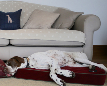 Luxury Bespoke Dog Beds