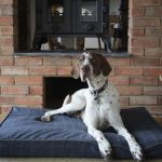 Badger-on-Windsor-main-tweed-memory-foam-bed