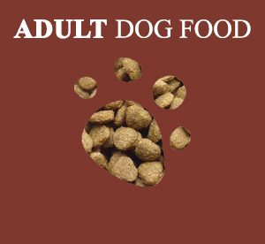 adult dog food